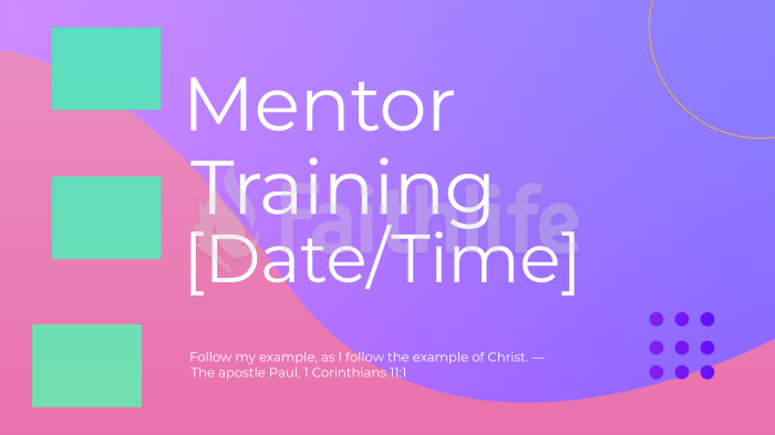 Mentor Training large preview