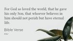 Foliage Psalms  PowerPoint Photoshop image 2