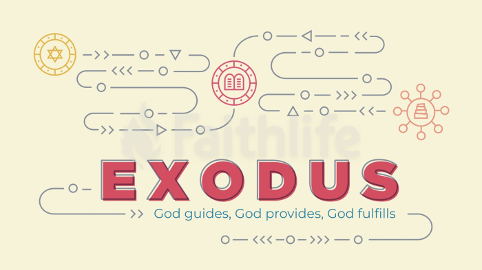 Exodus 16x9 smart media preview