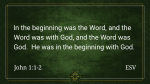 Prince Of Peace  PowerPoint image 4
