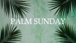 Palm Leaves Green sunday 16x9 2554596f 3b80 4334 b663 2c98d3208b72 PowerPoint image