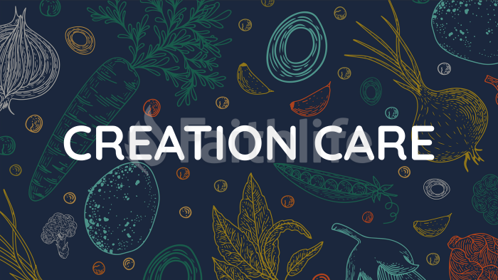 Creation Care large preview
