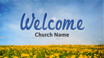 Dandelion Field welcome PowerPoint image