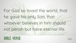 Palm Sunday  PowerPoint Photoshop image 3