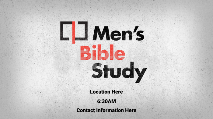 Illustrated Men's Bible Study large preview