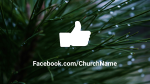 Pine Needle facebook 16x9 PowerPoint image