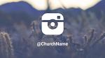 Cactus instagram 16x9 PowerPoint image