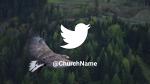 Bird Soaring  PowerPoint image 11