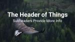 Bird Soaring  PowerPoint image 13