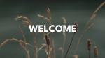 Normal Wildgrass welcome 16x9 1c13a4af 35ad 404f a6b8 d968c9604dce PowerPoint Photoshop image