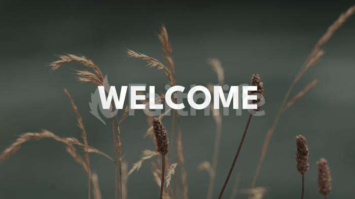 Normal Wildgrass welcome 16x9 1c13a4af 35ad 404f a6b8 d968c9604dce smart media preview