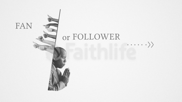 Fan or Follower large preview
