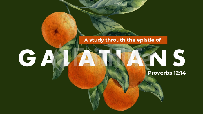The Gospel of Galatians large preview